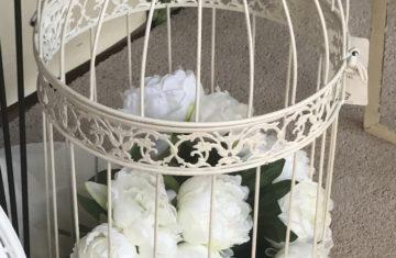 jaula flores portfolio